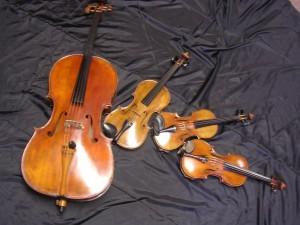Belle Fleur String Quartet
